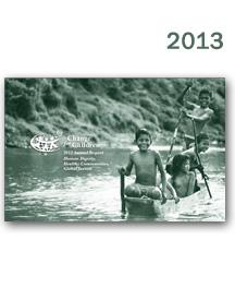 CFCA-AR-2013